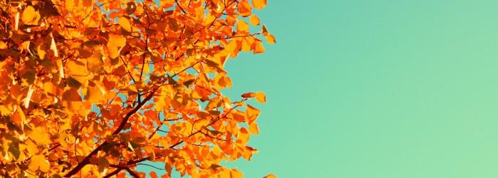 Seasonal September