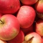 benefits of organic foods apples