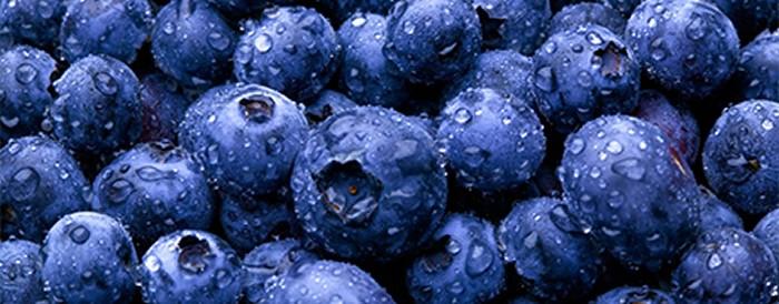 Health Foods For Summer – Blueberries
