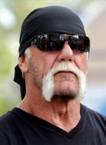 Hulk Hogan moustache
